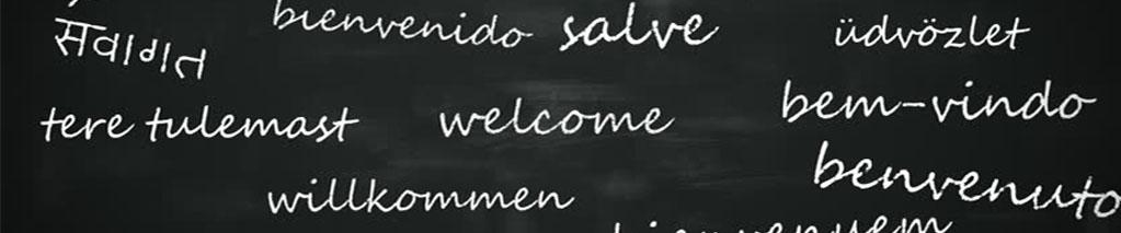 Liceo Linguistico Vermigli